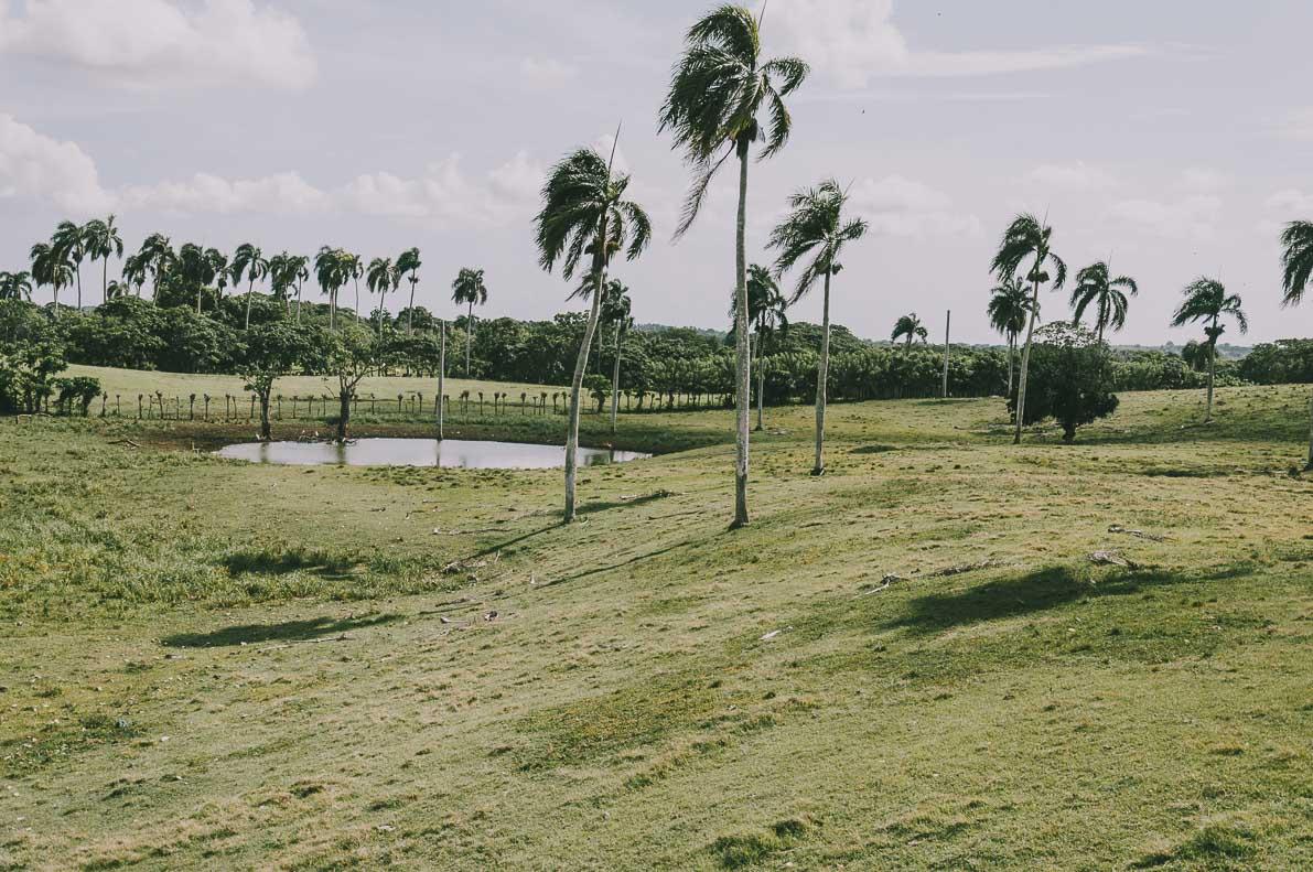 Punta-Cana-podroz-poslubna