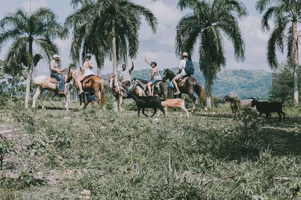 Punta-Cana-podroz-poslubna wycieczka nakoniach