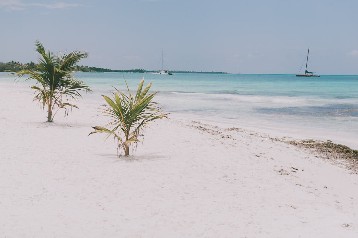 Punta-Cana-podroz-poslubna wyspa saona