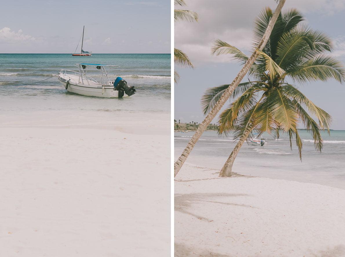 Wyspa-Saona palmy