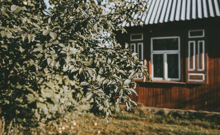 Kraina-Otwartych-Okiennic-2
