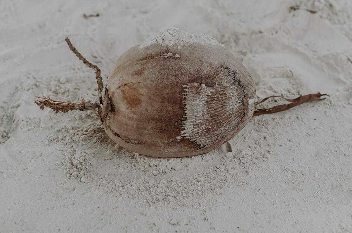 Wyspy-plaze-Tajlandii Koh Mook kokos