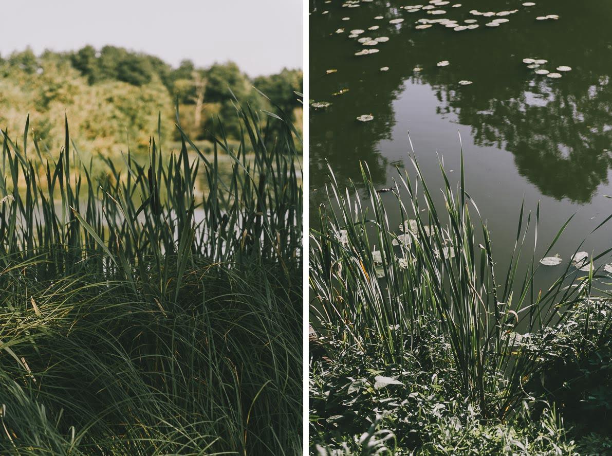 atrakcje-bialowiezy park pałacowy