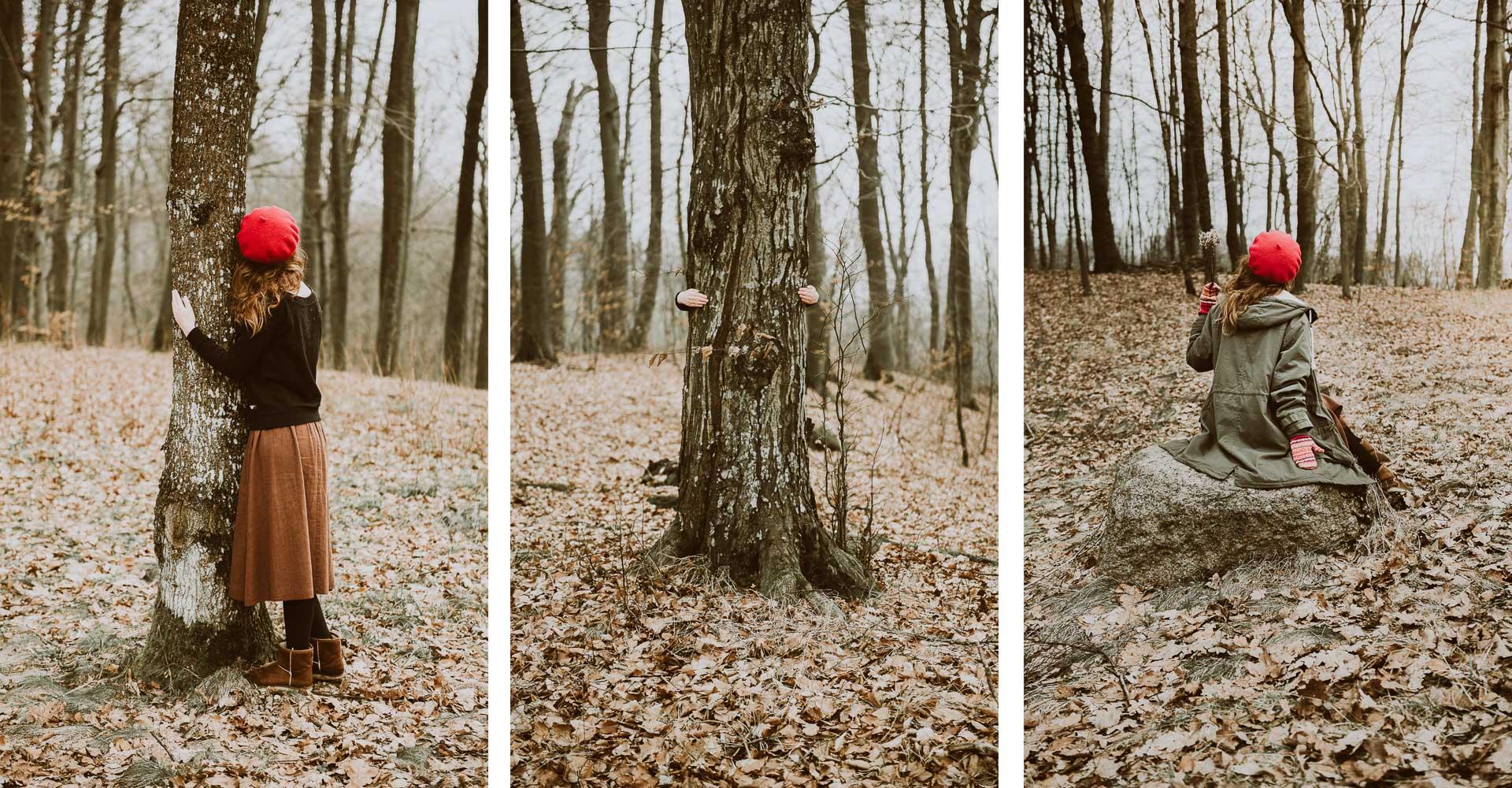 Dwór Dawidy las