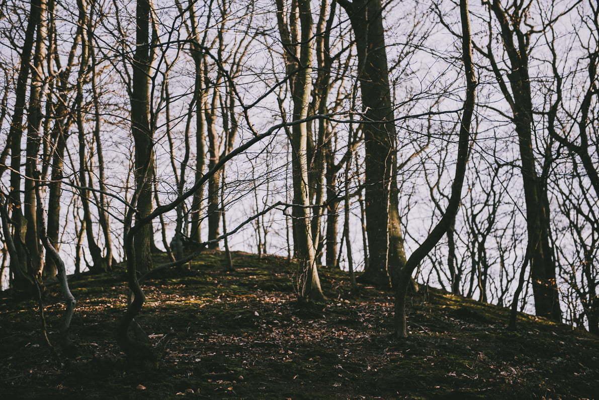 Wiosenne spacery poGdańsku