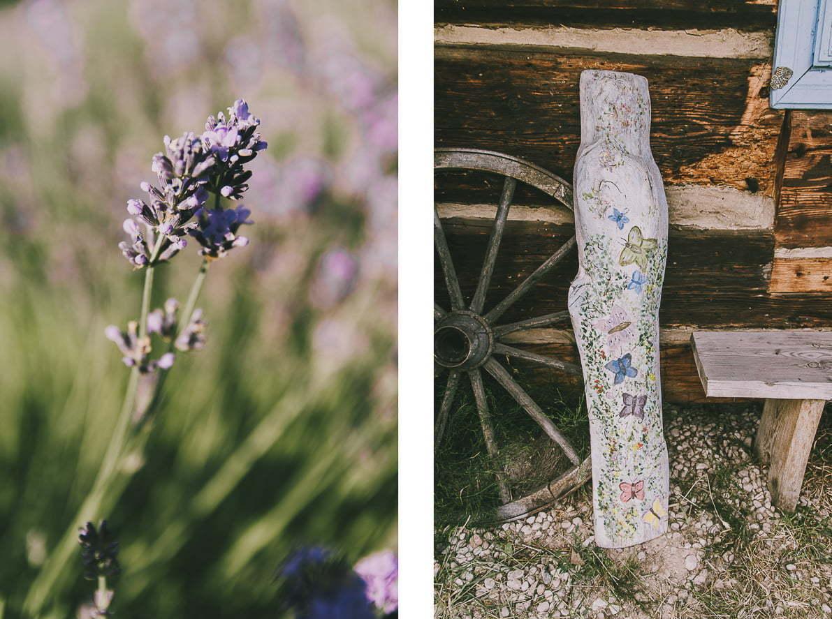 Gdzie znalezc lawende wPolsce - Lawendowe Pole naWarmii