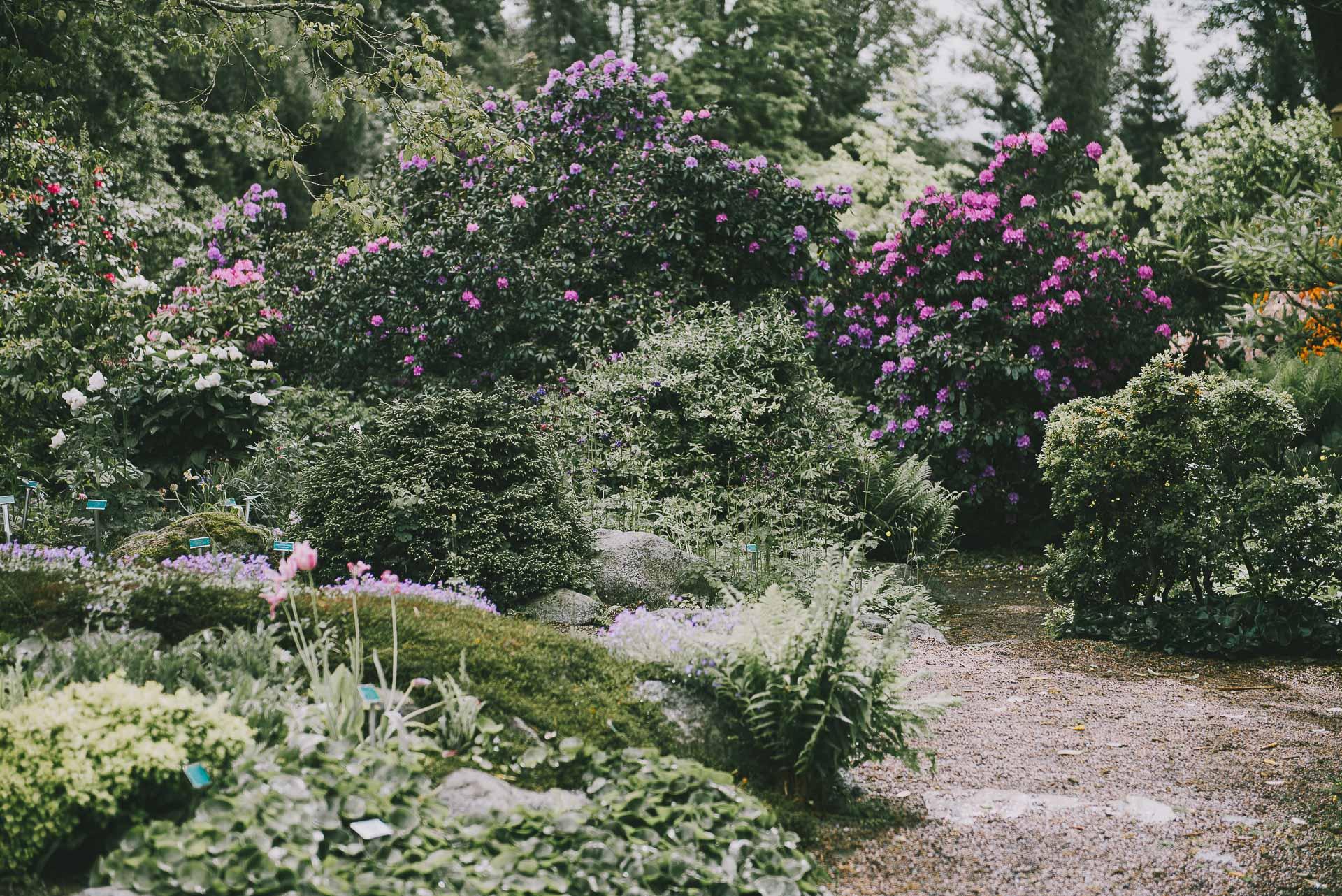 Lund ogród botaniczny