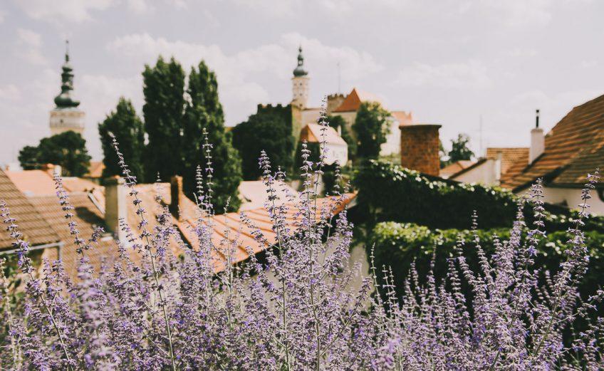 Największe atrakcje Moraw Południowych, czyli czeska Toskania.