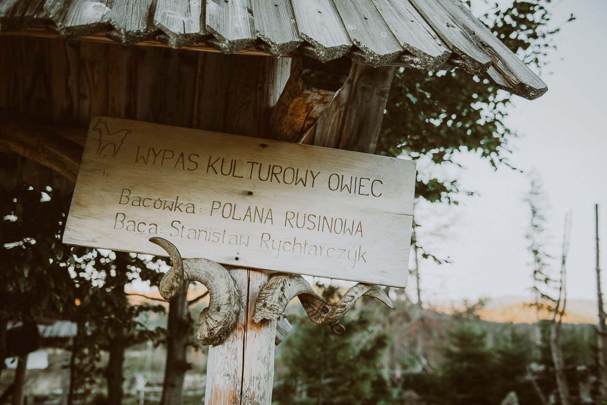 Tatry dla początkujących - Rusinowa Polana