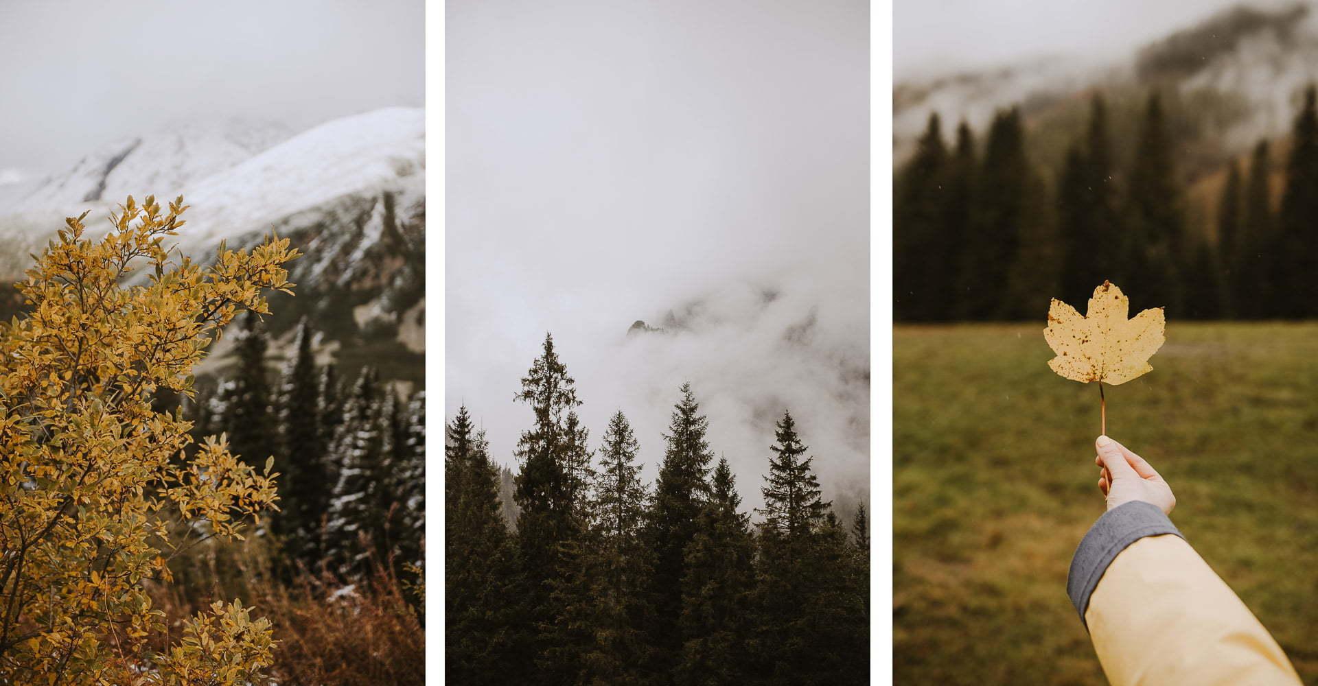 Pomysły najesienne zdjęcia - Tatry