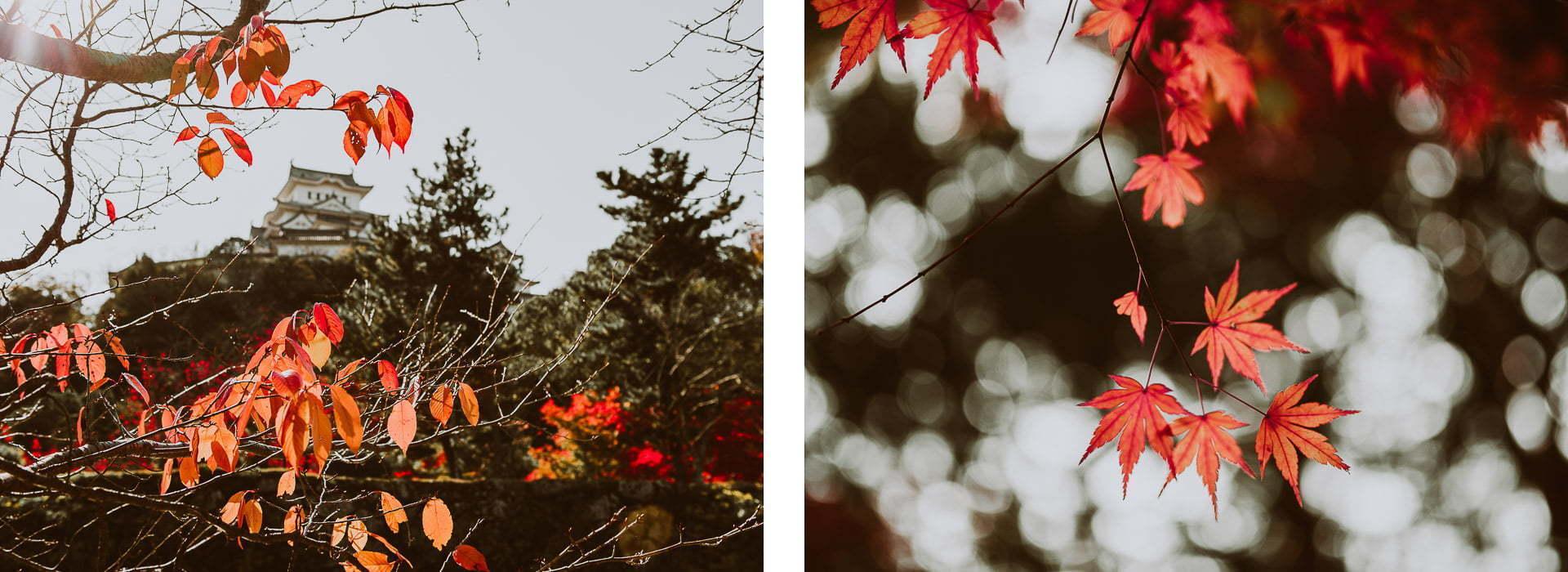 Japonia jesienią - zdjęcia Himeji