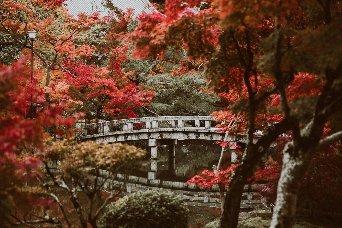 Japonia jesienią