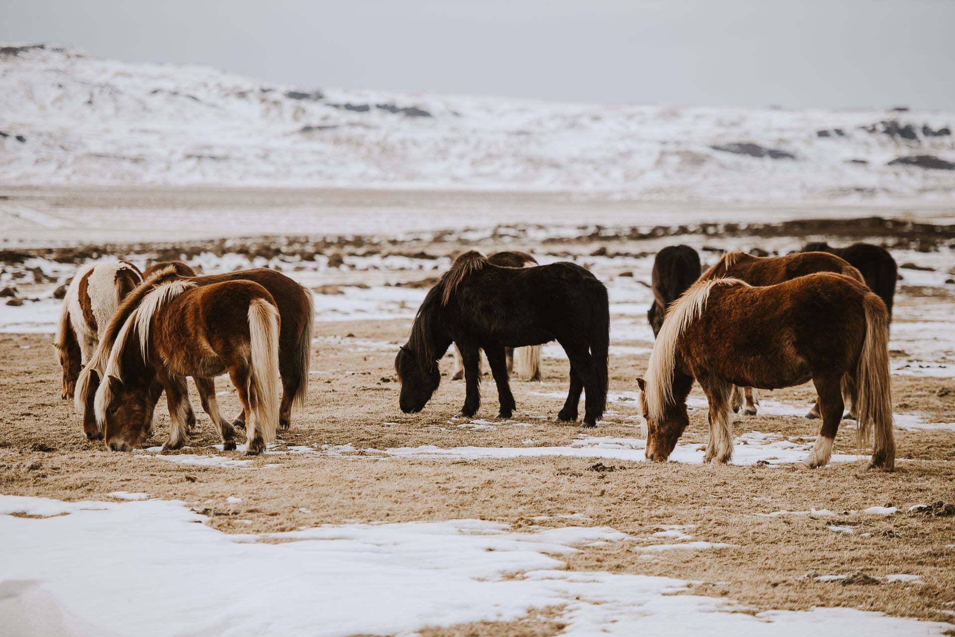 Podsumowanie 2019 roku Martyna Soul Blog - Islandia