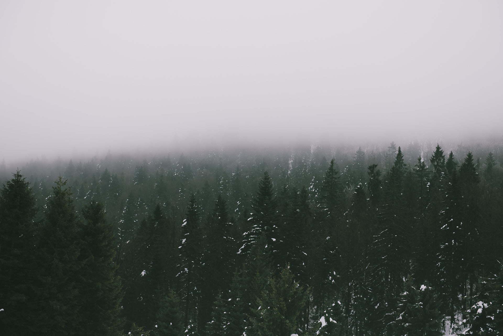 Gorce - szlak czerwony naTurbacz