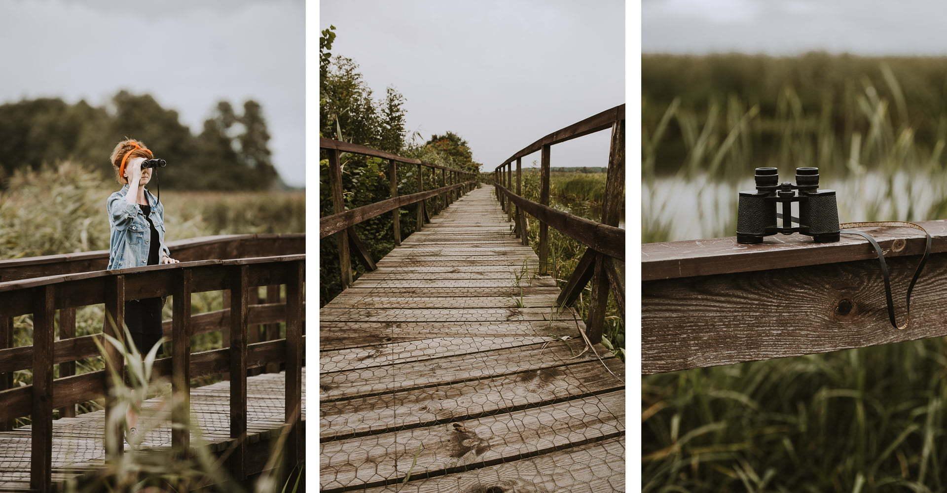 Atrakcje Podlasia - Narwiański Park Narodowy
