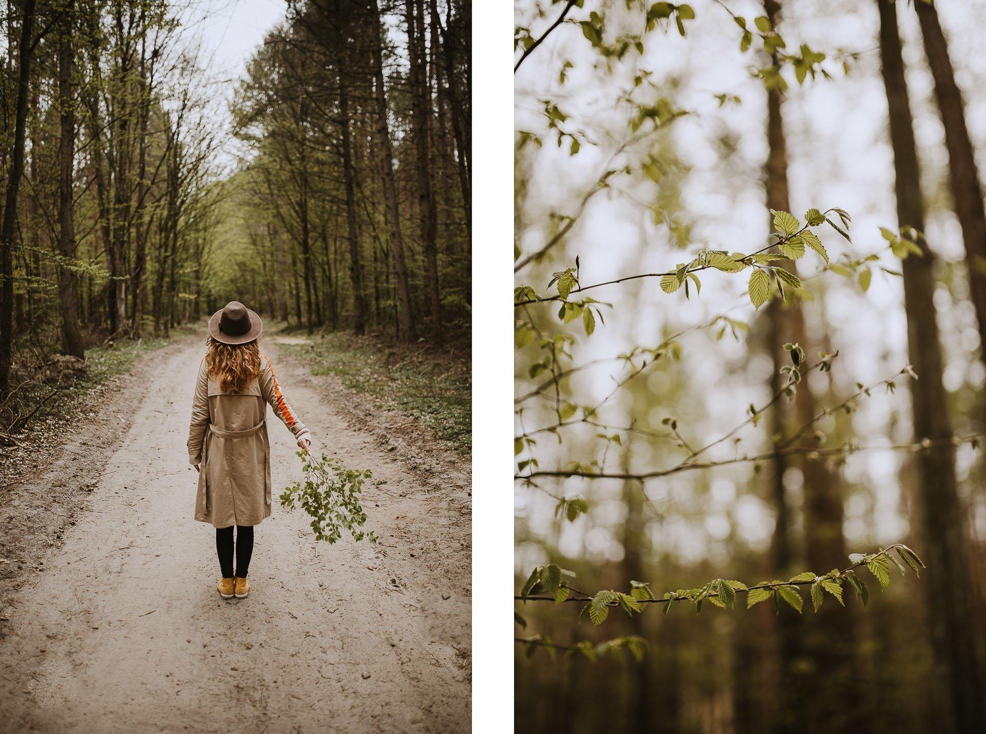 Wiosenne zdjęcia wlesie