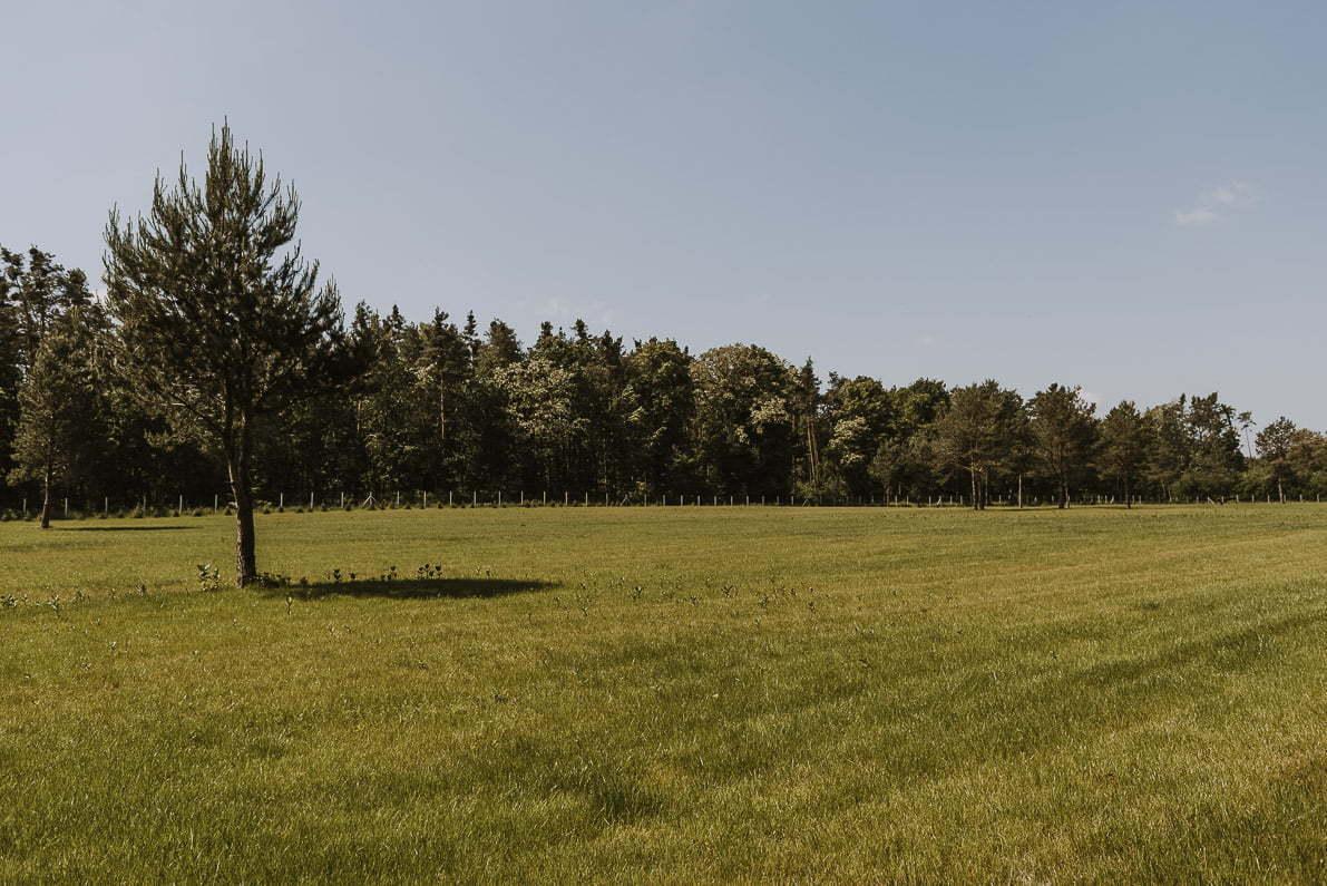 Pałac Rozalin - park