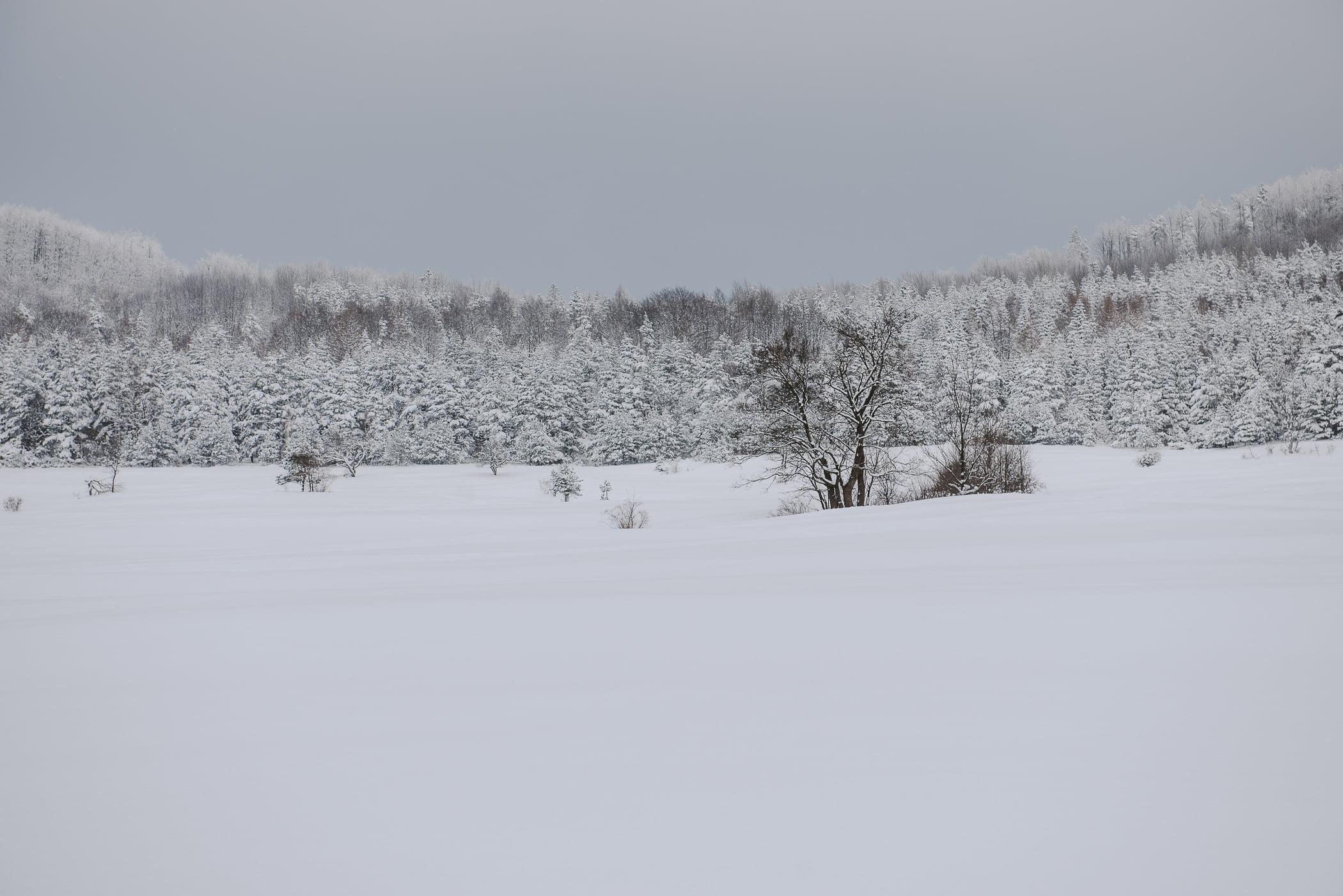 Beskid Niski zimą w3 dni – Bieliczna