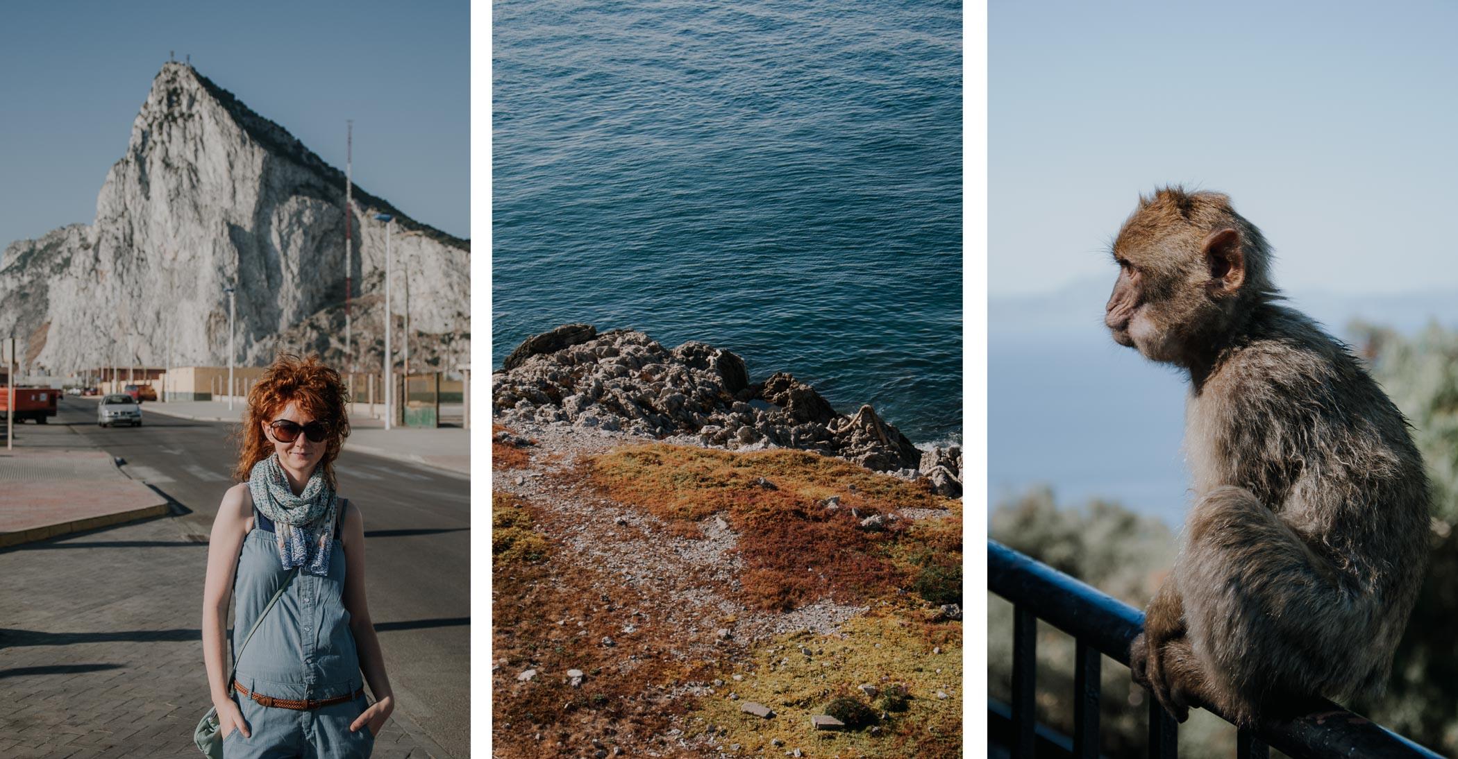 Gibraltar – małpy, lotnisko itajemnicza skała górująca nadmiastem.